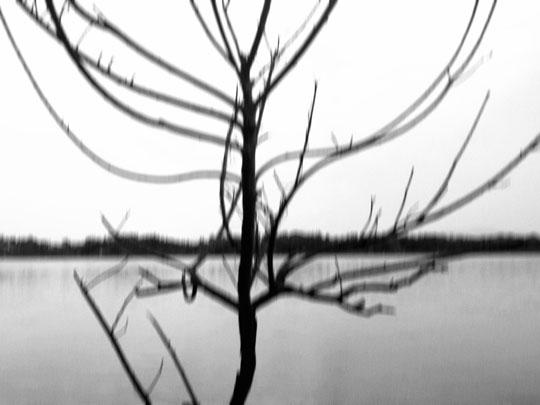 Efrem Raimondi iPhonephotography.