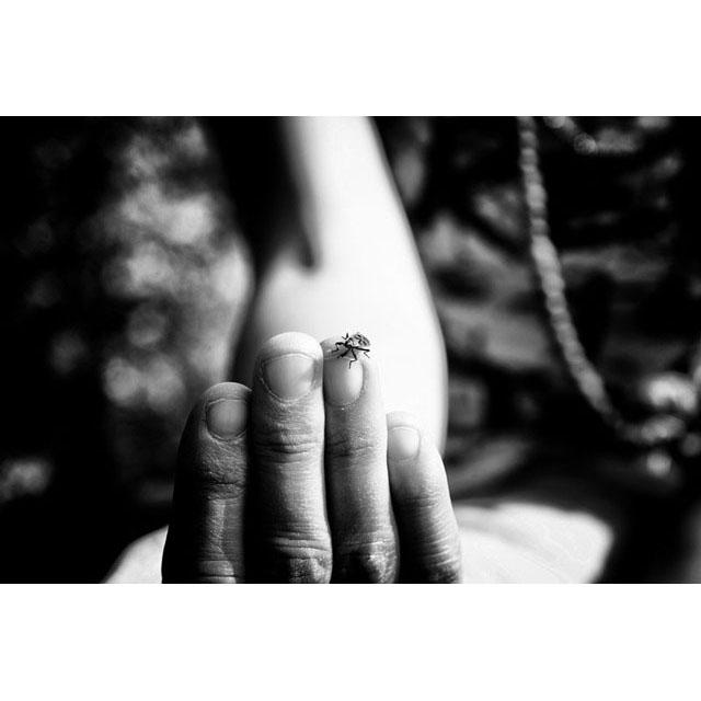 © Sara Munari - E.R. blog