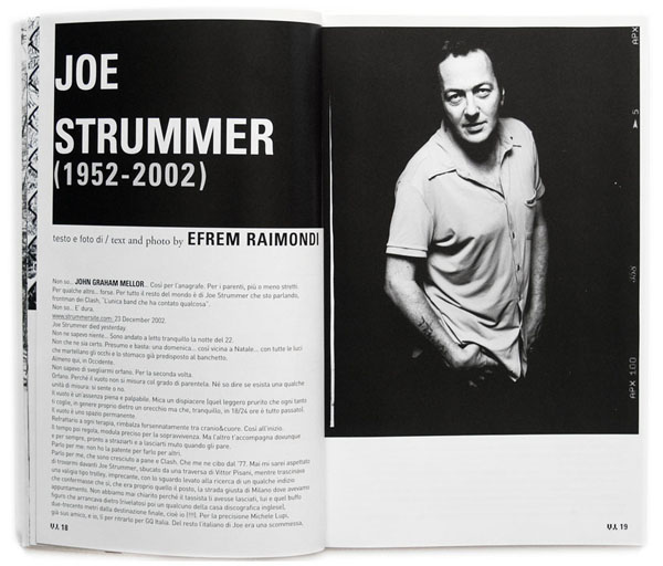 Joe Strummer by Efrem Raimondi