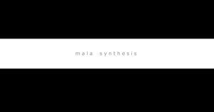 mala synthesis - Efrem Raimondi